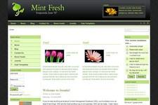 MintFresh